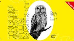 Torino Short Film Market, la galassia dei corti italiani ha il suo