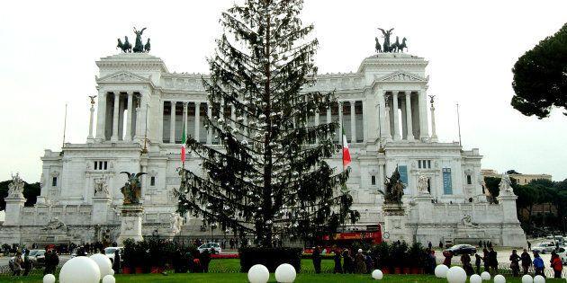 Spelacchio non finirà in una discarica. L'albero di Natale che ha fatto il giro del mondo potrebbe essere...