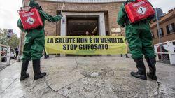 Bruxelles autorizza l'uso del glifosato per altri 5 anni, Italia e Francia votano no. L'ira di Macron: