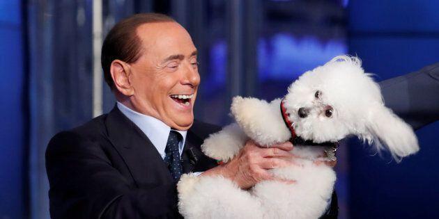 Berlusconi animalista per finta: mai una parola su lotta al randagismo e prezzi dei