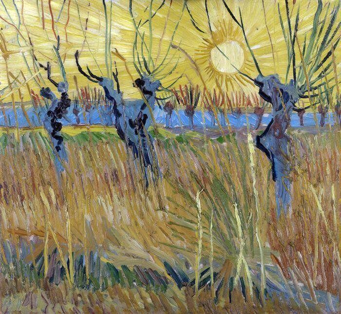 Mostra, Van Gogh: Gelsi potati al tramonto,