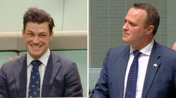 Il tempismo perfetto del parlamentare australiano: chiede la mano del compagno mentre in aula viene discussa la legge per i m...