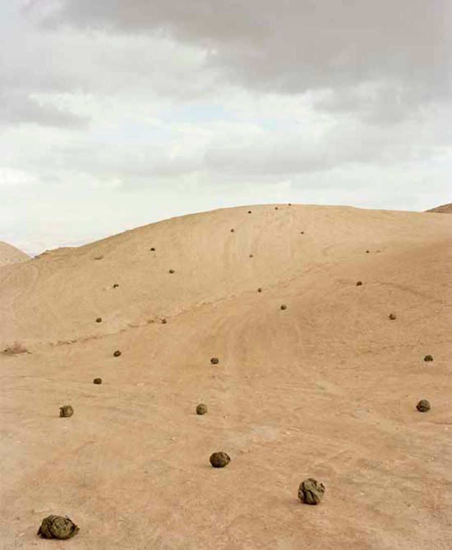 La fotografia evocativa ed estetica di Gidon