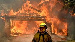 Le fiamme raggiungono Los Angeles, evacuate 150 mila persone. A rischio il quartiere delle star