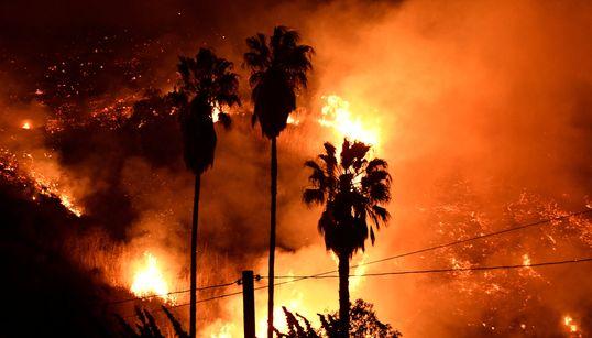Gli incendi in California non risparmiano nemmeno la vigna di Murdoch e la strada di Lynch
