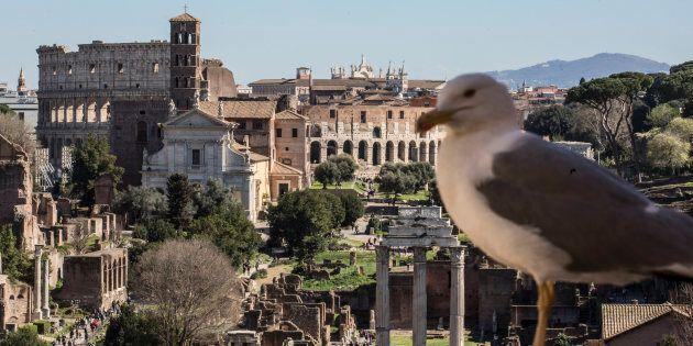 Cittadini romani bocciano i servizi: voto 4 ai bus, 3 alla pulizia della