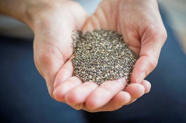 Close up of womans hands holding chia