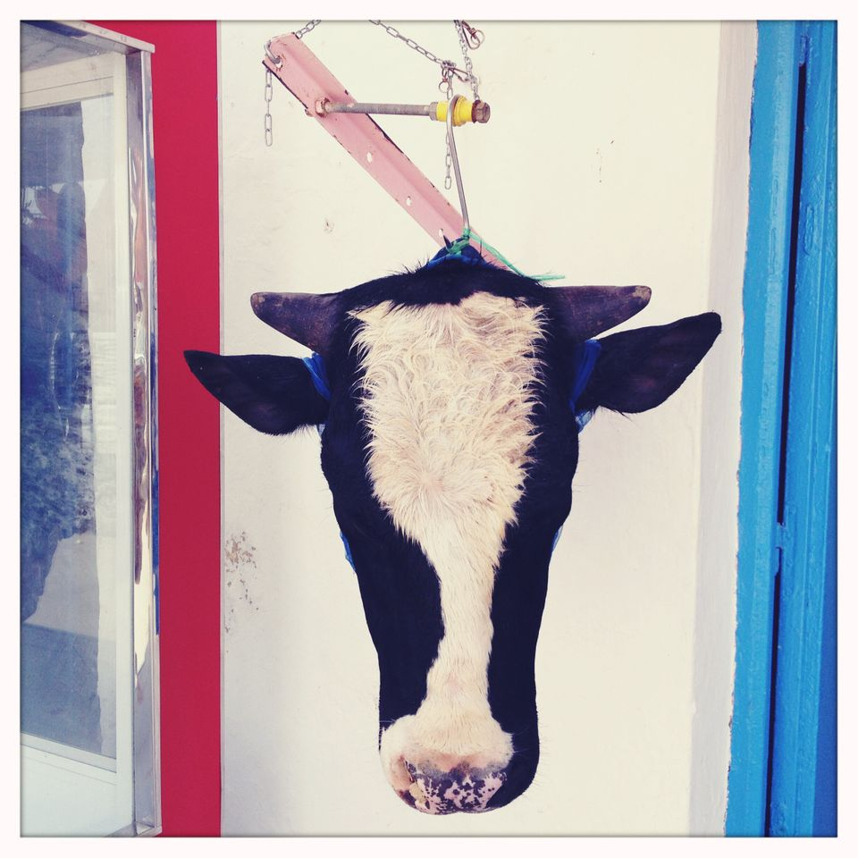 (Lotus Eaters) - Djerba Tunisia, April 2012- A cow's head hanging outside of a butcher's shop in one...