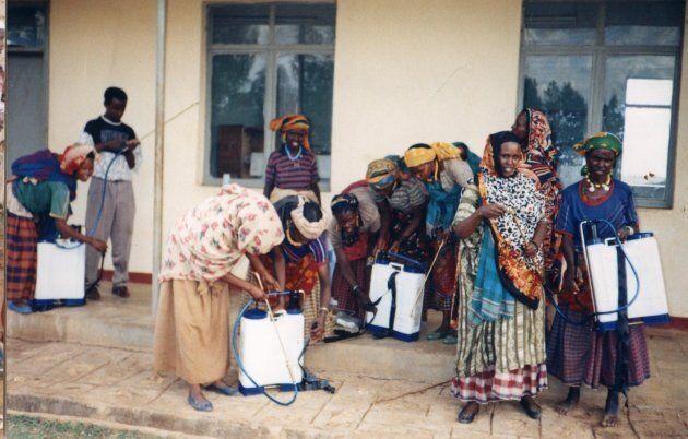 In Etiopia la povertà si combatte affidando alle donne capofamiglia delle