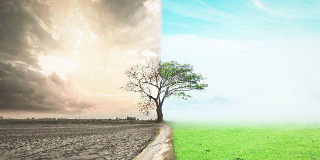 Giornata Mondiale dell'Ambiente: 5 disastri per il 5