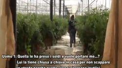 Romeni schiavizzati per un lavoro gratis. Le intercettazioni: