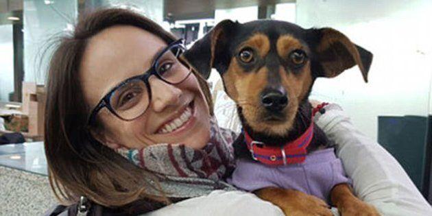 Il gesto di questa atleta verso questo cane ha messo in luce un lato oscuro delle Olimpiadi