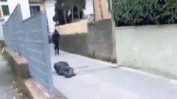 Aggrediscono un anziano e postano il video su Fb, identificati 5