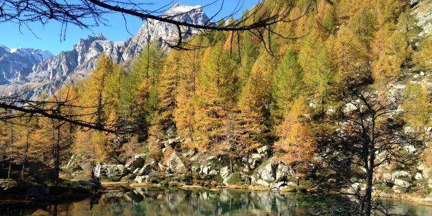 Una petizione per salvare l'Alpe