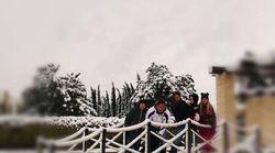 Tutti postano foto sulla neve. Ma non c'è dubbio che lo scatto più apprezzato sia il