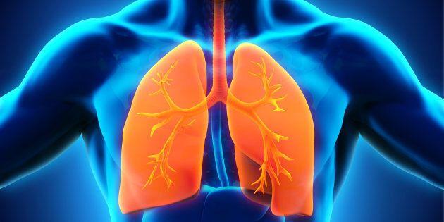 Macrolidi e Bpco. Prevenzione nelle riacutizzazioni infettive
