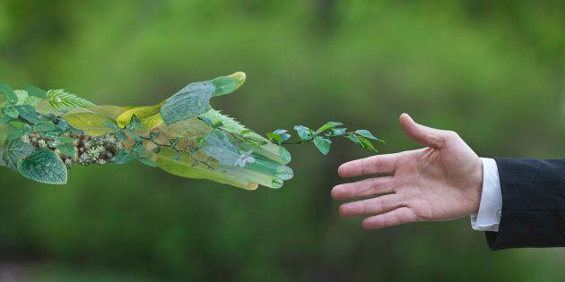 La lotta all'illegalità ambientale, una vera priorità per il