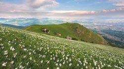 Bergamo, storie di tradizione e di