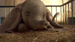 Vi bastano i due minuti del trailer di Dumbo di Tim Burton per