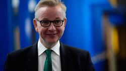Micheal Gove divide i brexiteers: non si
