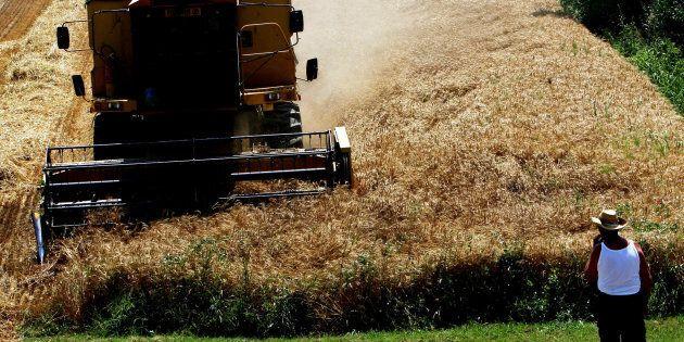 400.000 lavoratori agricoli a rischio