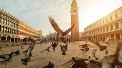 Bimbo di 5 anni in monopattino a Piazza San Marco: