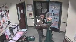 Entra in un rifugio per animali per rubare un distributore di caramelle: la rapina è