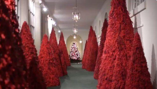 La stanza con gli alberi