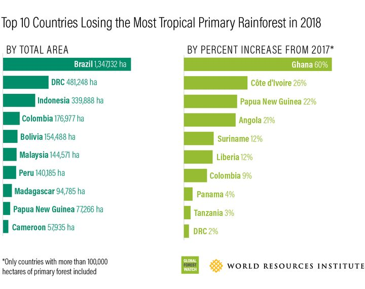 The countries that lost the most tropical primary rainforest in 2018, with Brazil having lost the most.