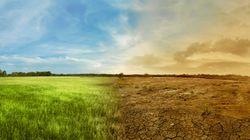 Il consumo di suolo e la necessità di educare (non solo l'opinione