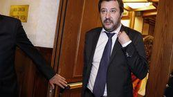 Salvini si
