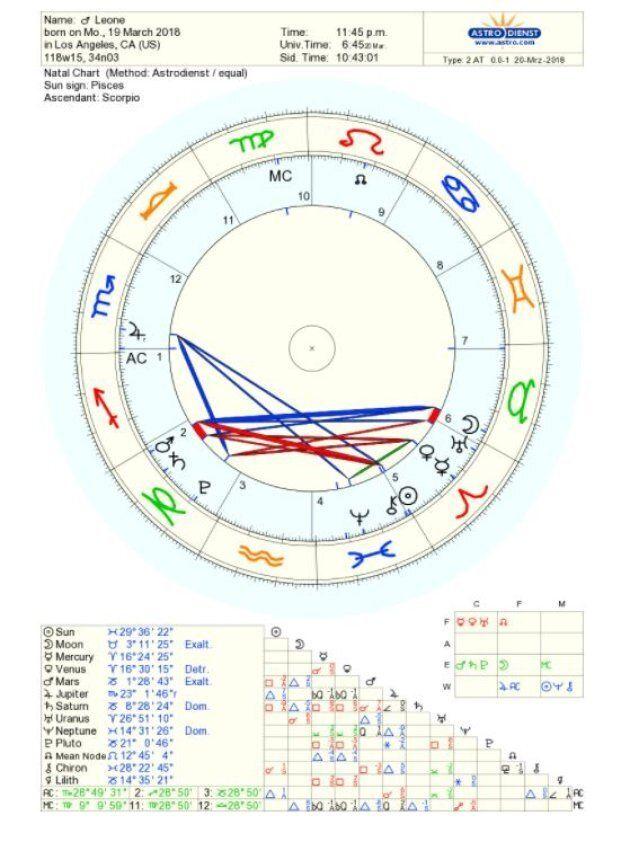Quale sarà la personalità di Leone? Simon and the Stars ha profilato il suo quadro