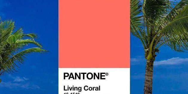 Il Living Coral è il colore dell'anno: lo dice