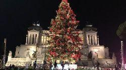 Spelacchio addio, acceso l'albero di Roma. Ed è