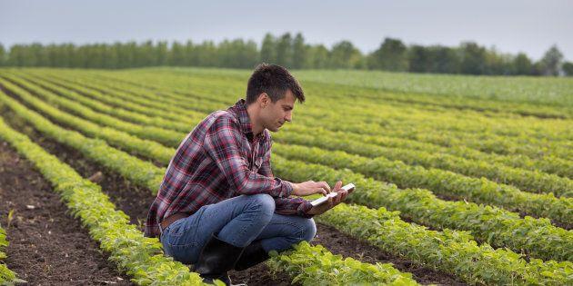 L'agricoltura italiana punta sul digitale per non essere tagliata fuori dai