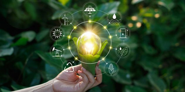 Imprese sostenibili più forti per innovazione e lavoro: ecco i vantaggi nel Rapporto GreenItaly di