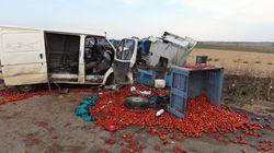 Scontro con un Tir carico di pomodori, morti quattro