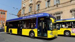 Aveva il biglietto sbagliato sul bus: 11enne di Modena multato e fotosegnalato.