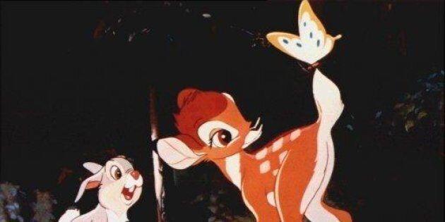 Bracconiere condannato a un anno di carcere, dovrà guardare Bambi in cella una volta al