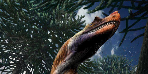 È italiano il più antico dei grandi dinosauri