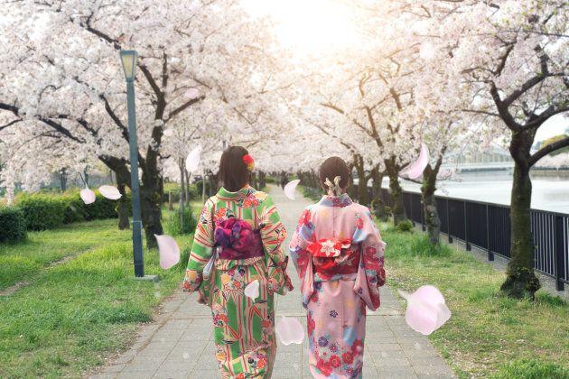 Couple asian women wearing traditional japanese kimono in sakura garden in Osaka,