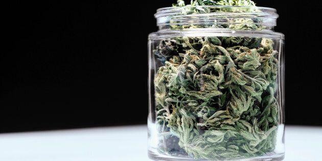 Ddl su legalizzazione cannabis a uso ricreativo. Matteo Mantero: