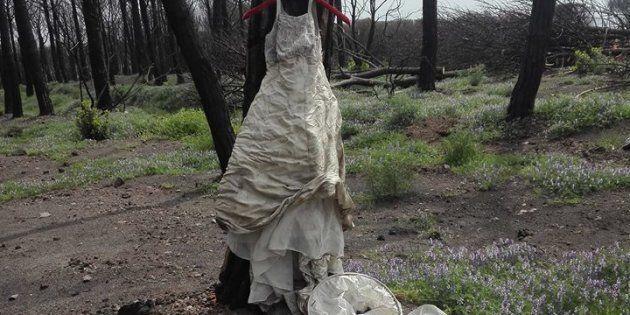 Di chi è l'abito da sposa abbandonato sul
