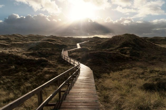 Dunes on the North Frisian Island Amrum in
