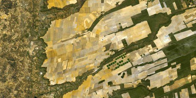 Dallo Spazio alla Terra, come i satelliti possono aiutarci a coltivare e allevare