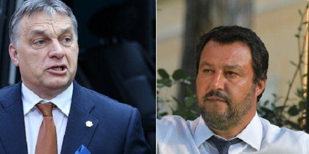 Ong, i centri sociali, la Cgil... prove di sinistra in piazza durante l'incontro tra Salvini e Orban...