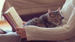 Oggi è la Giornata Mondiale del Libro, ma 6 italiani su 10 non ne leggono nemmeno uno