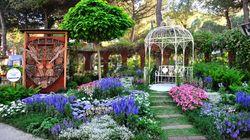 Cervia Città Giardino giunge alla 46° edizione: torna a maggio la mostra d'arte floreale più grande