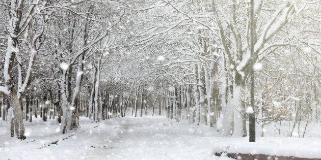 L'inverno avanza: da mercoledì neve a bassa