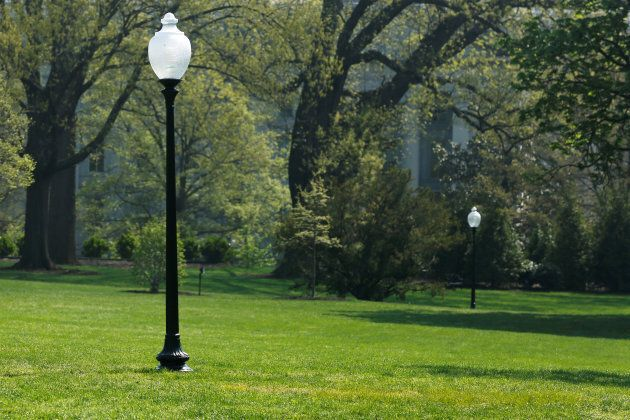 A yellow spot is seen where the tree planted by French President Emmanuel Macron and U.S. President Donald...